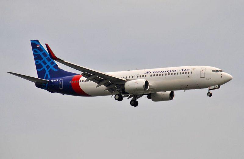 Boeing 737-800 (Foto: Sabung.hamster aka Everyone Sinks Starco aka BxHxTxCx).